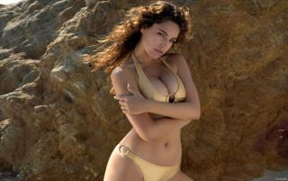 Obrazek: Kelly Brook HD