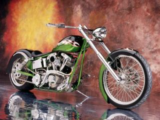 Obrazek: 2005 Special Construction FXR Reptilian DNA